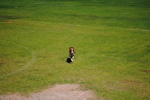 Dog on the Go!!
